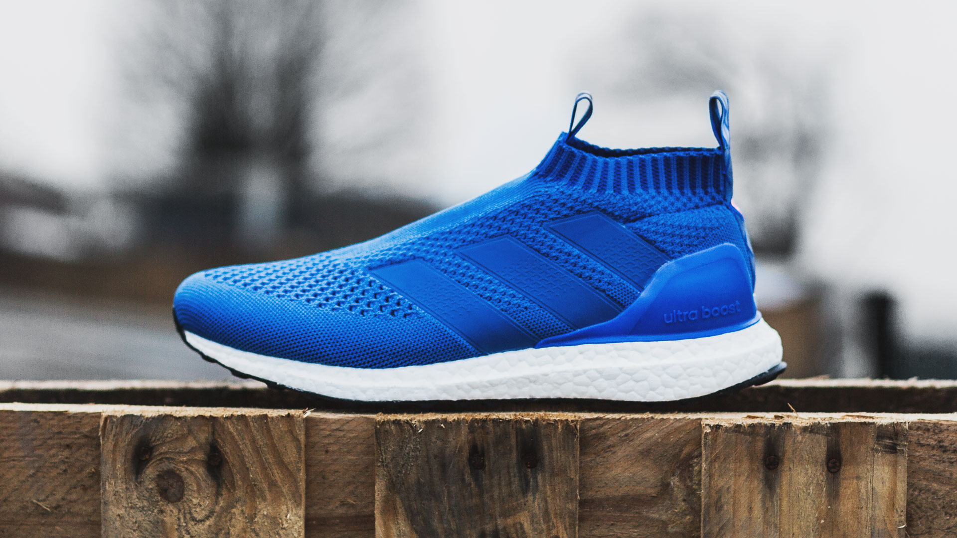 ACE 16+ Purecontrol ULTRABOOST Shoes