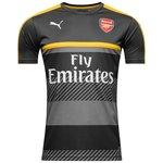 Arsenal Trænings T-Shirt Grå/Gul