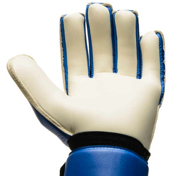 half off 667c8 29073 adidas Goalkeeper Gloves ACE Competition - Blue/Core Black ...