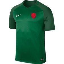 ishøj if - udebanetrøje grøn børn - fodboldtrøjer