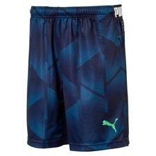 puma training shorts ftblnxt pro - blue/navy kids - training shorts
