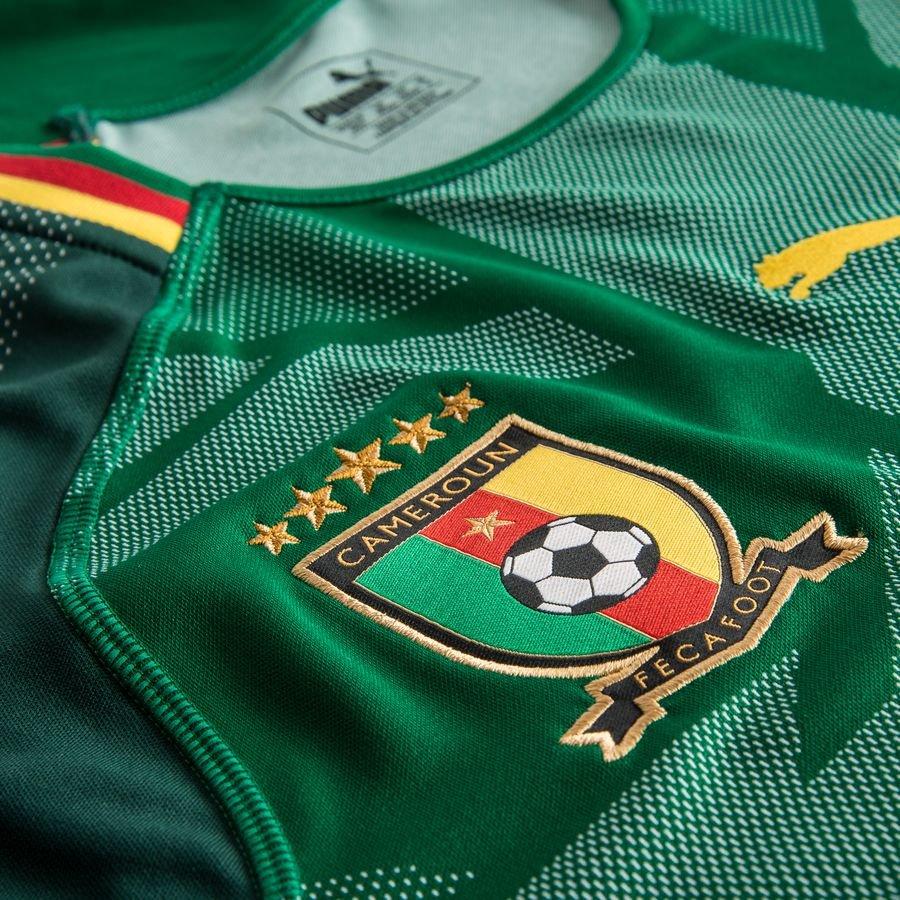 afrikameisterschaft 2019