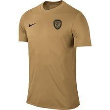 gold age academy - kamptrøje guld - fodboldtrøjer