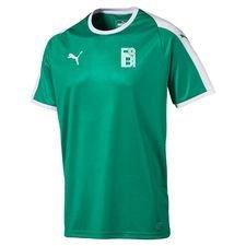 fredensborg bi - hjemmebanetrøje grøn - fodboldtrøjer