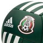 mexico fodbold - grøn/hvid - fodbolde