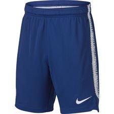 Chelsea Shorts Dry Squad - Blå/Vit Barn