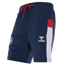 danmark shorts - blå/hvid - fodboldshorts