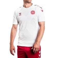 Danmark Udebanetrøje VM 2018 Pro Player Edition