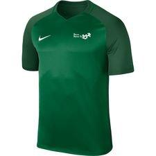 hf2000 - hjemmebanetrøje grøn - fodboldtrøjer