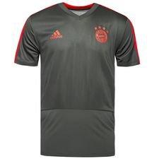 Bayern München Tränings T-Shirt Grön/Röd