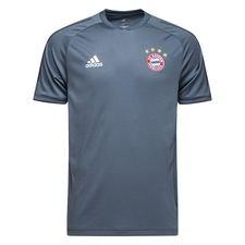 Bayern München Tränings T-Shirt UCL - Grå/Svart