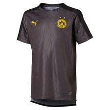Dortmund Tränings T-Shirt Stadium - Grå/Svart Barn