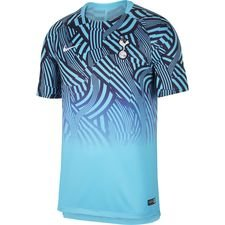 Tottenham Tränings T-Shirt Dry Squad GX 2.0 - Turkos/Navy/Vit
