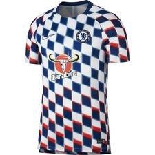 Chelsea Tränings T-Shirt Dry Squad GX 2.0 - Vit/Blå
