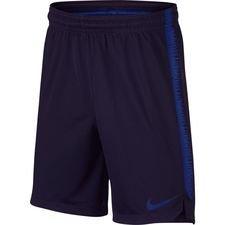 Image of   Nike Shorts Dry Squad 18 - Blå/Navy Børn