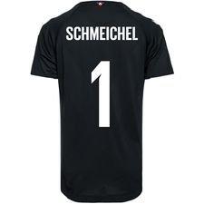 Danmark Målvaktströja VM 2018 Svart Pro Player Edition SCHMEICHEL 1