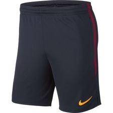 Roma Shorts Dry Strike - Navy/Guld