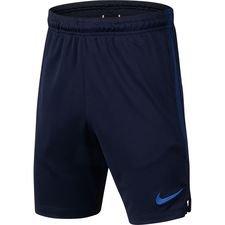 Chelsea Shorts Dry Strike - Navy/Blå Barn