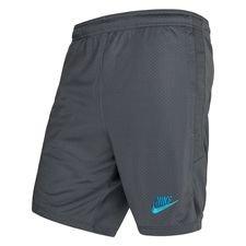 Tottenham Shorts Dry Strike - Grå/Blå