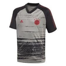 Bayern München Tränings T-Shirt Presentation - Grå/Svart Barn