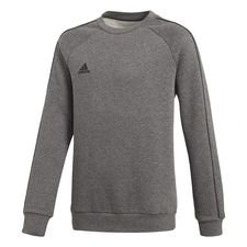 Core 18 Sweatshirt Grau