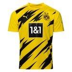 Dortmund Heimtrikot 2020/21