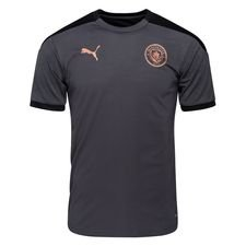 Manchester City Tränings T-Shirt - Grå/Brun