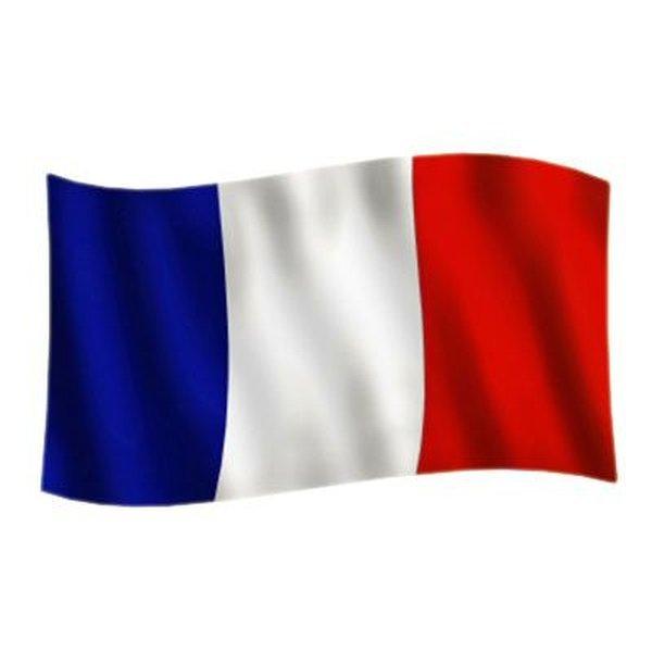 Frankrig Flag | www.unisport.dk