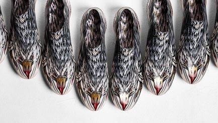 Hurtigste levende dyr forvandles til en støvle ...